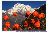 20091029  尼泊爾 安娜普娜山脈健行第二天:29尼泊爾 波拉卡安娜普娜山脈健行2 (101).jpg