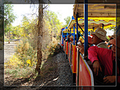 20081011  南彊大漠帕米爾/塔克拉瑪干大沙漠/輪台-塔中-民豐:3.輪台胡楊林公園 (38).JPG