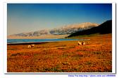 19990729 新疆北疆行13天:17.賽里木湖 (24).jpg