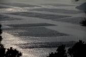 20160212 霞浦(三沙鎮小皓村觀灘塗、日落):5. 霞浦三沙鎮小皓村觀灘塗、日落 (4).JPG