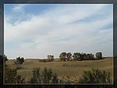 20081011  南彊大漠帕米爾/塔克拉瑪干大沙漠/輪台-塔中-民豐:6.塔克拉瑪干大沙漠 (15).JPG
