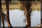 20081011  南彊大漠帕米爾/塔克拉瑪干大沙漠/輪台-塔中-民豐:3.輪台胡楊林公園 (78).jpg