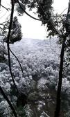 20160124  新北市三峽區逐鹿山追雪記:三峽熊空 (19).jpg