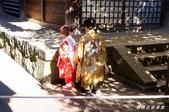 東大寺‧春日大社遊記:DSC00771.jpg
