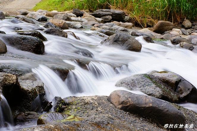雙流國家森林遊樂區:DSC06987.jpg