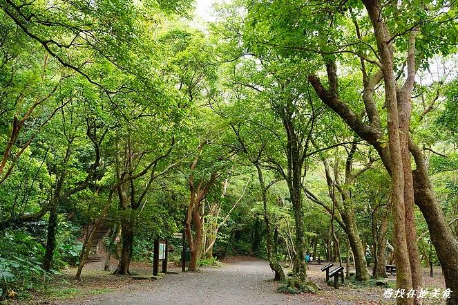 雙流國家森林遊樂區:DSC07011.jpg