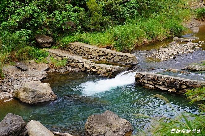 雙流國家森林遊樂區:DSC07026.jpg