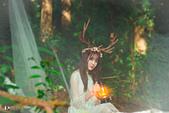jiang_迷麓森林10703:_DSC3519.jpg