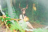 jiang_迷麓森林10703:_DSC3525.jpg