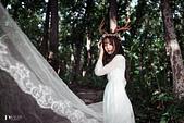 jiang_迷麓森林10703:_DSC3478.jpg
