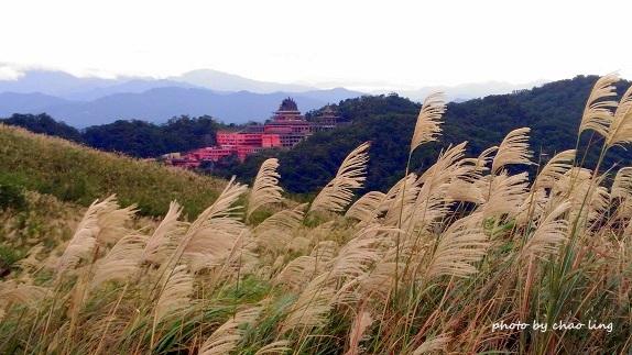 2016秋之豔:三角埔頂山-40.jpg