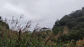 平溪平湖遊樂區主線道接西支線O行~110.02.09~1592:4.jpg