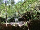 平溪平湖遊樂區上西支線豋番子坑山來回行~108.12.26~1356:IMG_2265.JPG