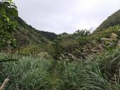 瑞芳龍洞海洋公園上龍洞坑古道來回行110.02.25~1600:12.jpg