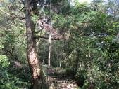 平溪平湖遊樂區上西支線豋番子坑山來回行~108.12.26~1356:IMG_2277.JPG