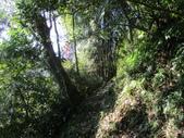 平溪平湖遊樂區上西支線豋番子坑山來回行~108.12.26~1356:IMG_2268.JPG