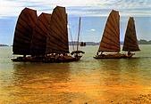 越南-明信片:A boat-Wharf.jpg