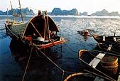 越南-明信片:下龍灣的漁船.jpg