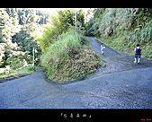 2010忘憂森林:忘憂森林021.jpg