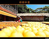2010新埔柿餅行:味衛佳柿餅019.jpg