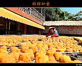 2010新埔柿餅行:味衛佳柿餅020.jpg