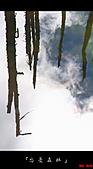 2010忘憂森林:忘憂森林072.jpg