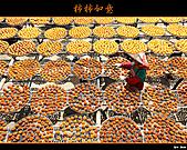 2010新埔柿餅行:味衛佳柿餅025.jpg