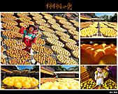2010新埔柿餅行:味衛佳柿餅001.jpg