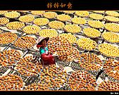 2010新埔柿餅行:味衛佳柿餅028.jpg