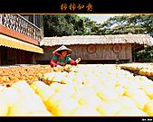 2010新埔柿餅行:味衛佳柿餅014.jpg
