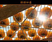2010新埔柿餅行:味衛佳柿餅004.jpg