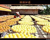 2010新埔柿餅行:味衛佳柿餅016.jpg