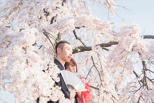 20150331-_OFU5518.jpg - ♥京都櫻花嫁