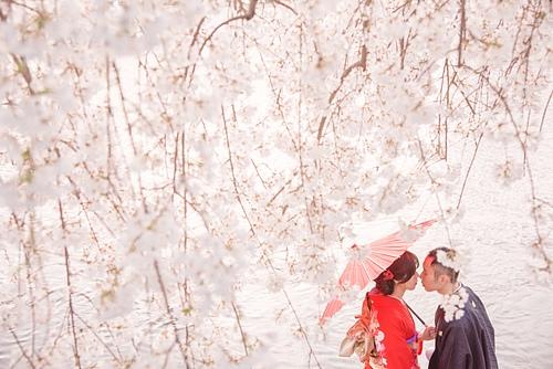 20150331-_OFU5833.jpg - ♥京都櫻花嫁