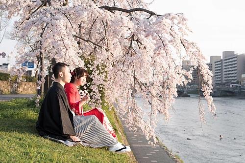 20150331-_OFU5681.jpg - ♥京都櫻花嫁