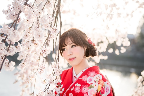 20150331-_OFU5636.jpg - ♥京都櫻花嫁