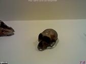 十三行博物館:IMG267.jpg