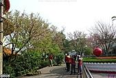 天元宮賞櫻:1000320淡水 041.JPG