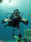 澎湖水族館:IMG_20201011_154308.jpg