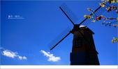 20100211 藍天。旅行:09.jpg