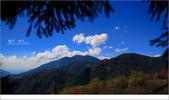 20100211 藍天。旅行:11.jpg