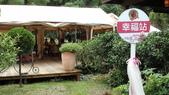 台中逢甲夜市vs新社安妮公主花園:DSC00617.JPG