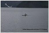 阿拉斯加遊冰河:22.jpg