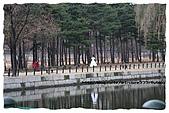 2008.DEC.韓國&北緯三十八度:63.jpg