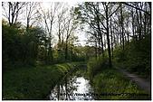 荷蘭公園散散步:10.jpg