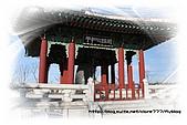 2008.DEC.韓國&北緯三十八度:91.jpg