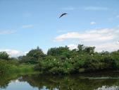 羅東林業文化園區:DSC00118.jpg
