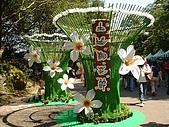 2009土城桐花節:DSC01526.jpg