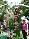2009土城桐花節:DSC01528.jpg