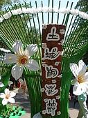 2009土城桐花節:DSC01531.jpg